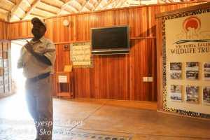 zimbabwe-elephant-ride-2
