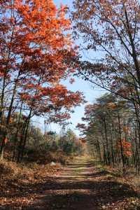 rails-to-trails-35