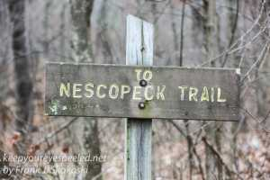 nescopeck-state-park-7
