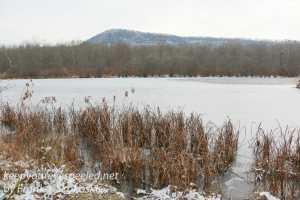 ppl-wetlands-11