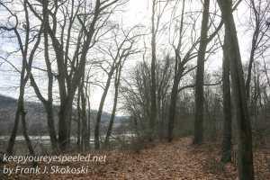ppl-wetlands-46