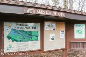 ppl-wetlands-5