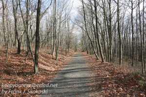 rails-to-trails-hike-10