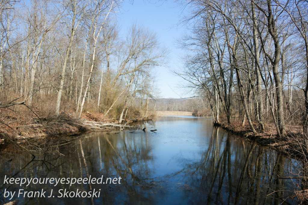 PPL Wetlands-39