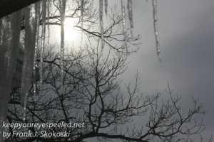 blizzard walk Marh 15 morning -2