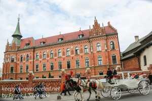 Poland Krakow afternoon walk-51