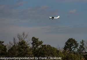 small plane taking off above trees