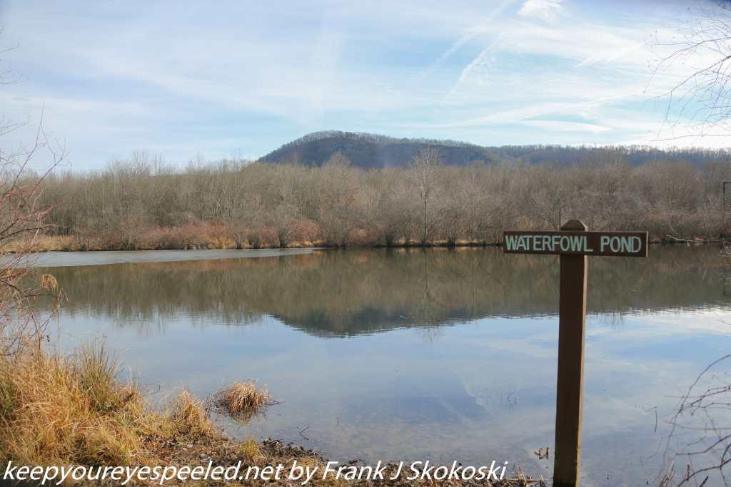 PPL Wetlands (10 of 35)