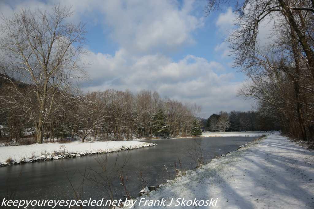 winter scene at PPL wetlands