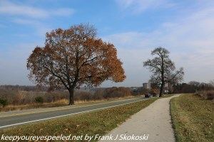 tree lined road Valley Forge