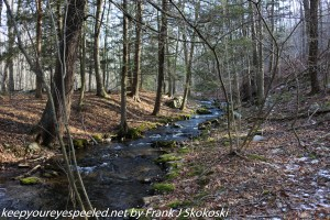 Big Wapwallopen Creek