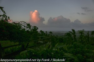 clouds at sunset rain forest