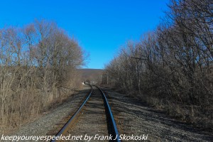 railroad track trees and blue sky