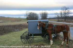 Amish horse and carriage Middle Creek