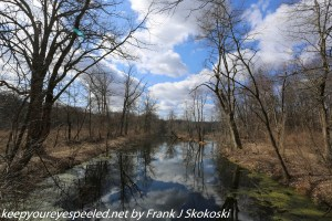 reflection of clouds and trees on ponds