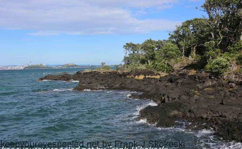 New-zealand-Day-Twenty-Auckland-Rangitoto-deive-and-hike-to-summit-6-of-20