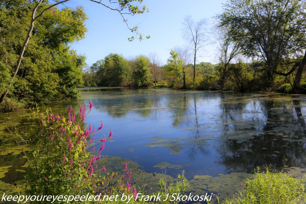 PPL Wetlands hike (1 of 53)