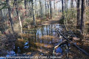 water overflowing on trail
