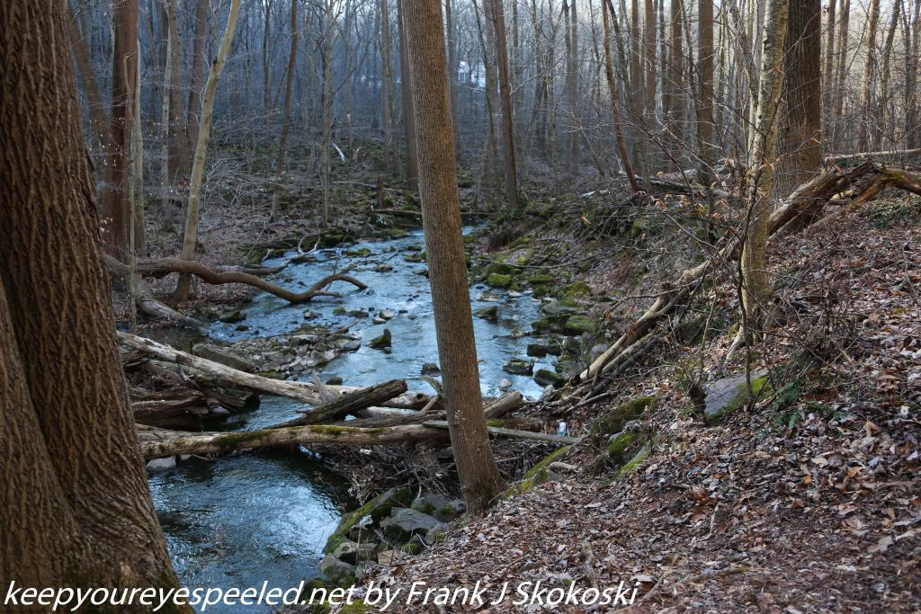 Middle Creek (13 of 42)
