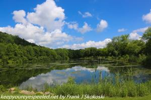 first day of summer at the PPL wetlands