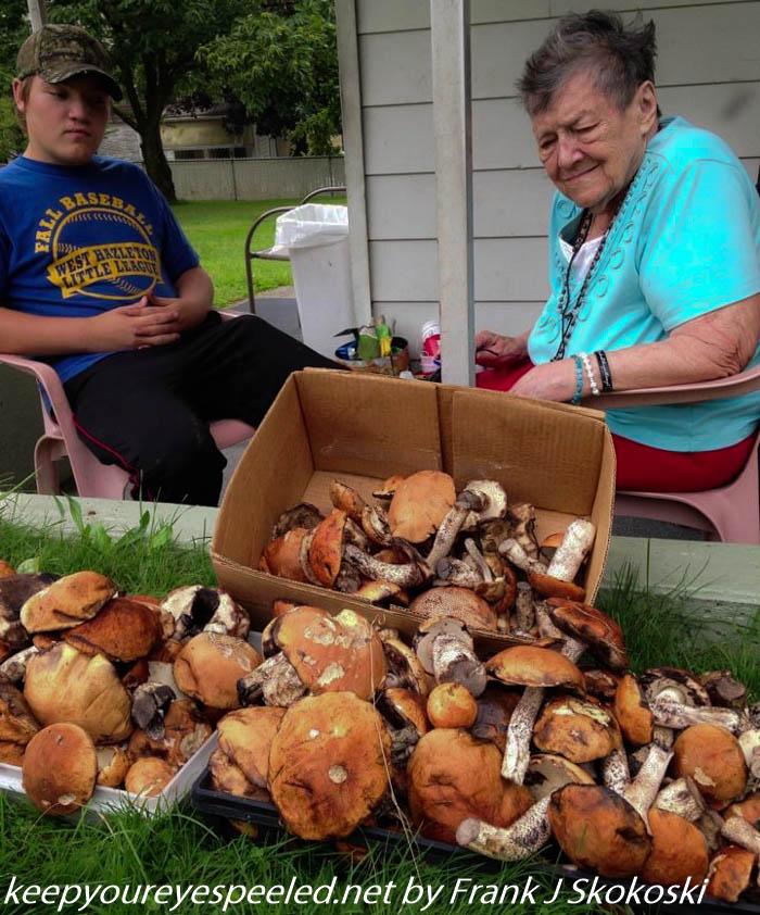 Mushroom hike (1 of 1)