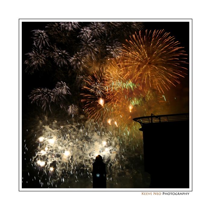 firework8