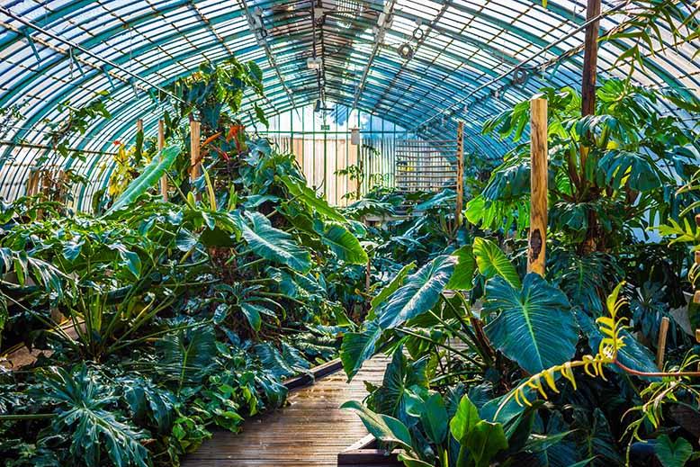jardin des serres d auteuil keewego