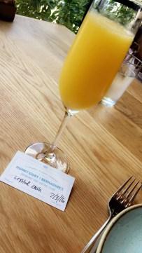 Mimosa and my membership card