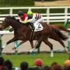 有馬記念不調で回避のラキシスそのまま引退が決定