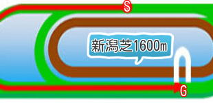 新潟芝1600mの二次元画像