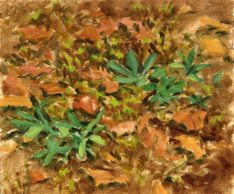Fall-Leaves-(26)