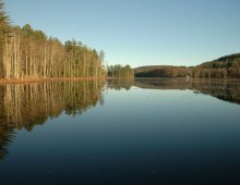 Yankeetown Pond Project (2015)