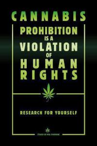 Cannabis prohibition is a violation of human rights