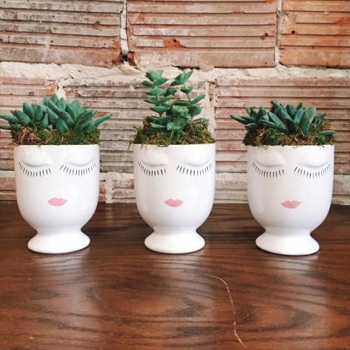 Accent Decor Celfie Vase With Succulents   keiralennox.com