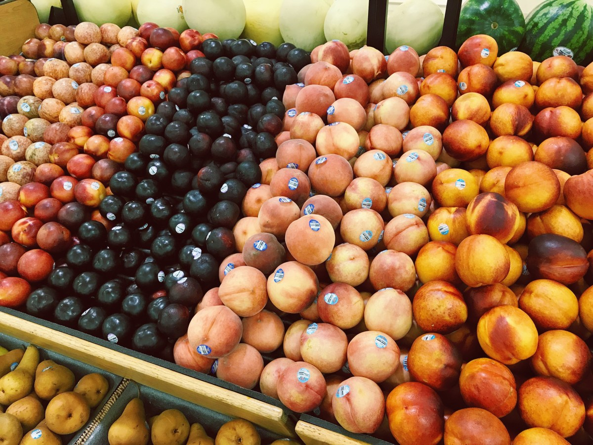 Peaches, Plums and Plumcots