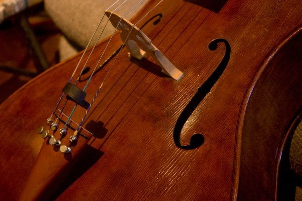 one of Sibylle Ruppert's cellos, made from tulip wood.  She is an excellent luthier..