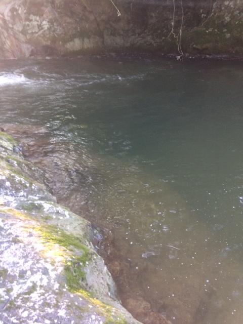 秋渓流ルアー