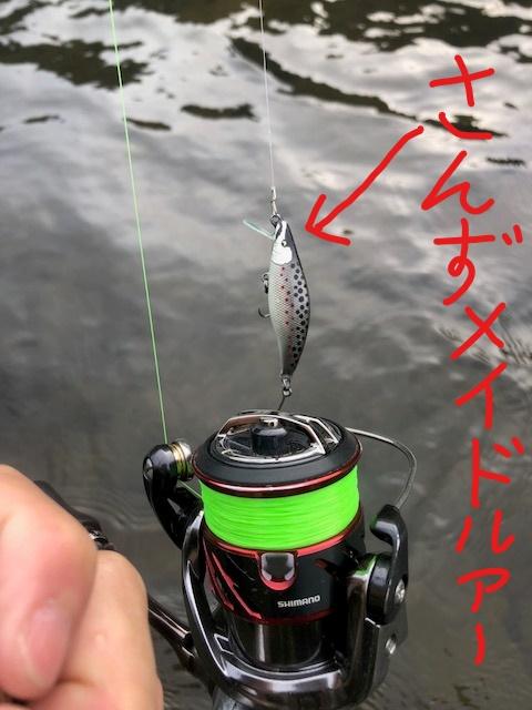 渓流ルアー釣行ブログ