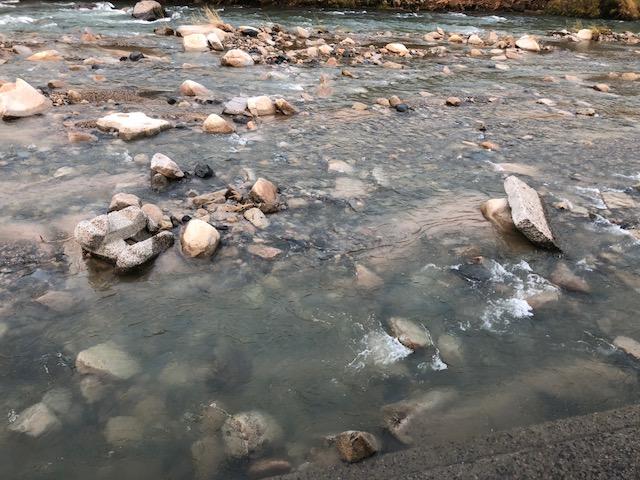 渓流ルアー