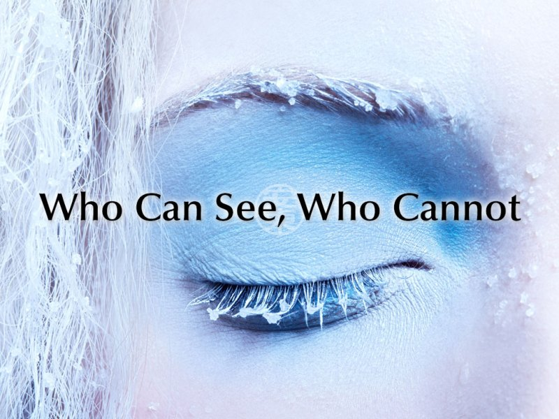Who Can See, Who Cannot
