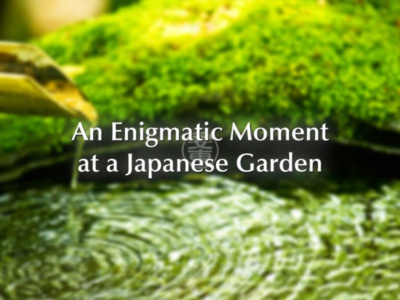 An Enigmatic Moment at a Japanese Garden