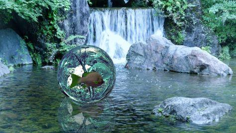 P2190233ー魚の旅1.jpg
