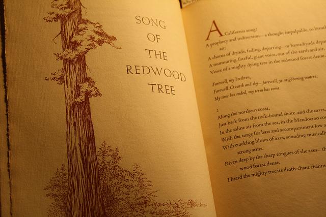 Photo of published poem by Megan Rosenbloom