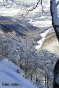 Iain Chamberlin on a blue bird, waist deep day in Nozawan Onsen