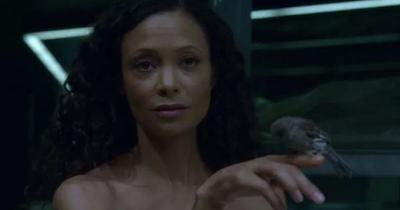 Thandie Newton as Maeve