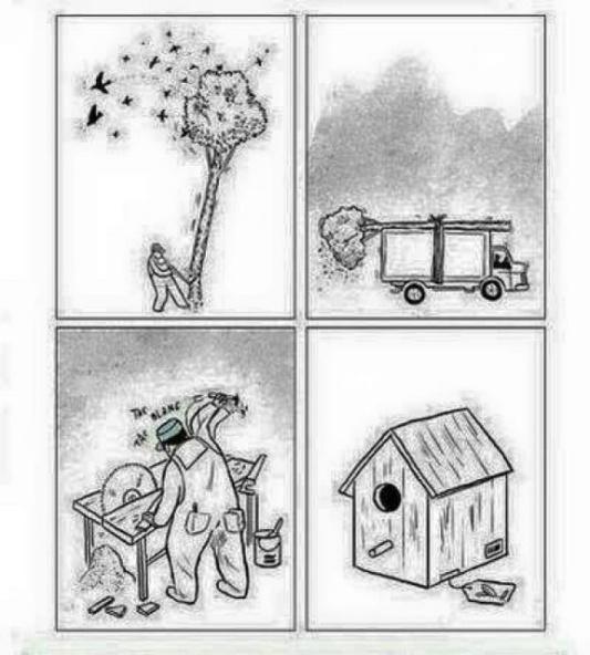 bird-house-cartoon