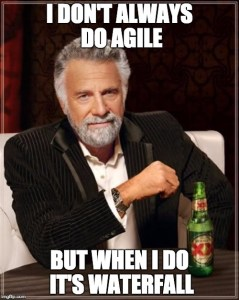 agilefall-fail