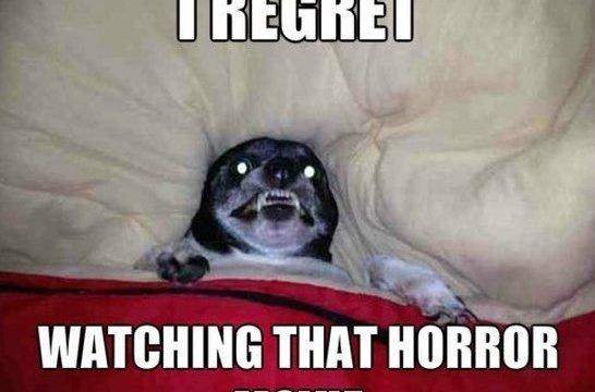 https://i0.wp.com/keithlovesmovies.com/wp-content/uploads/2015/09/regret.jpg?resize=546%2C360&ssl=1