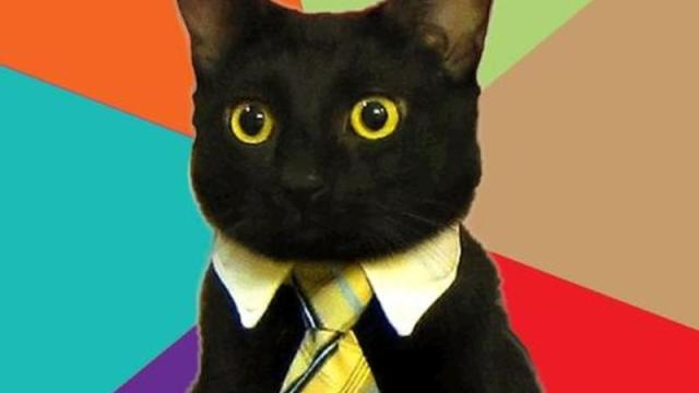 https://i0.wp.com/keithlovesmovies.com/wp-content/uploads/2015/10/resized_business-cat-meme-generator-the-internetz-my-secret-weapon-cc0c54.jpg?resize=640%2C360&ssl=1