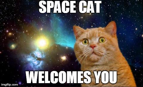 https://i0.wp.com/keithlovesmovies.com/wp-content/uploads/2015/10/space-cat.jpg?resize=480%2C293&ssl=1